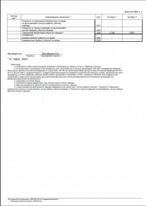 бух отчет 2015 04